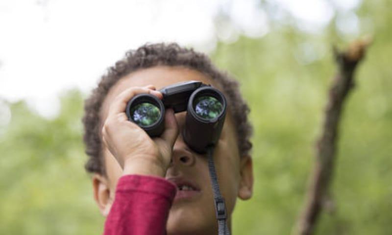 Spotwachters