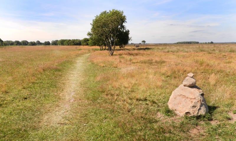 Wandelroute Kloosterveld