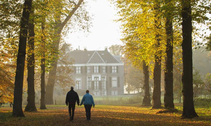 Ontdek de herfstpracht op Boekesteyn in 's-Graveland