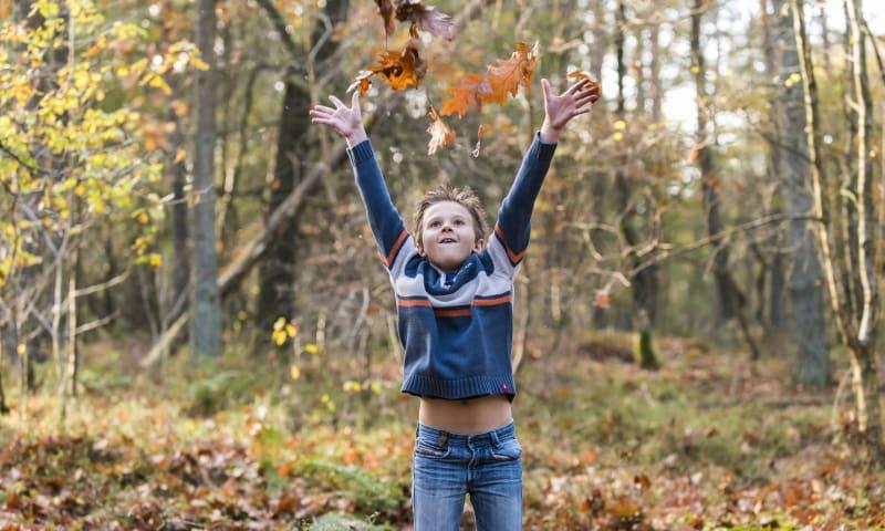 natuurbelevingstocht herfst 20