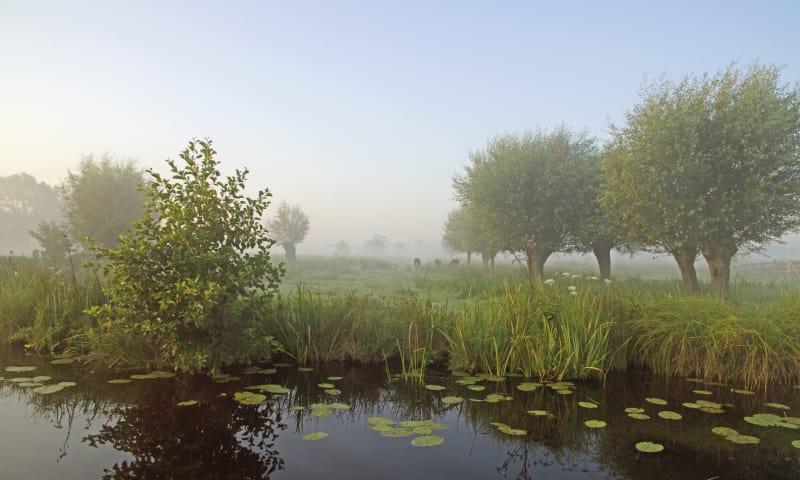 Kabbelend water en natuurparels