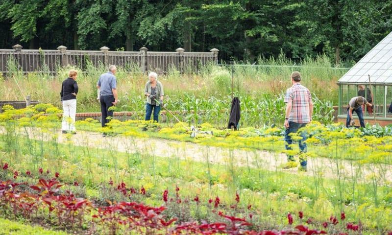 werken in de tuinen
