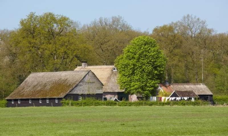 Wandelroute landgoed De Klencke (Drenthe)
