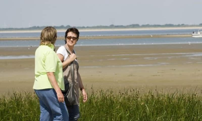 Wandelroute De Koploper in de duinen van Goeree (deel 2)