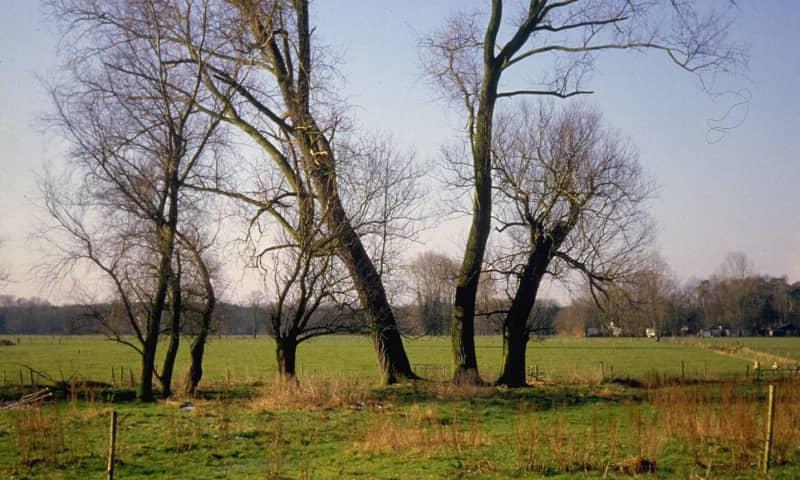 Kleinschalig landschap van de Chaamse Beek