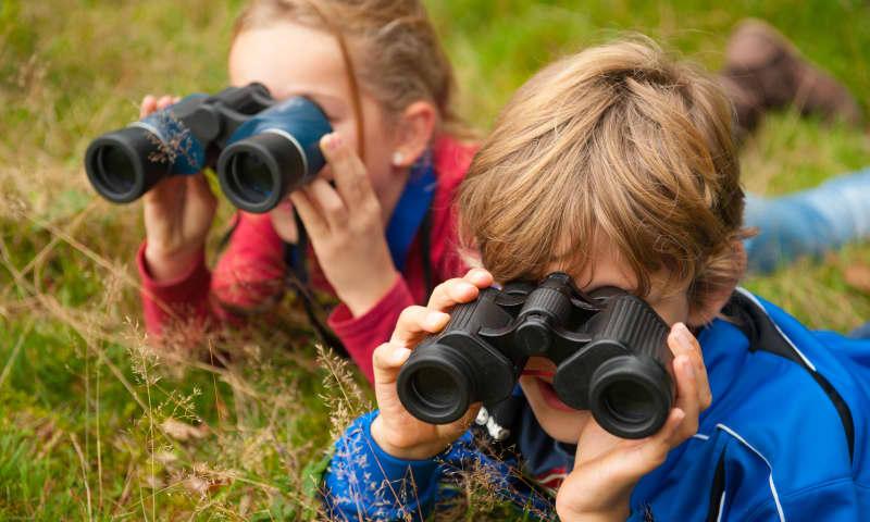 OERRR Vogelsafari met de boswachter in s-Graveland