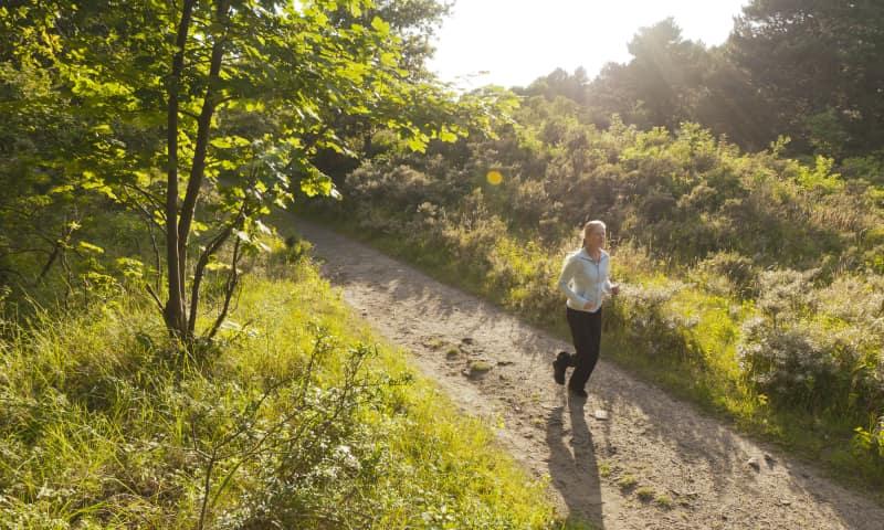 Hardlopen in Nationaal Park Zuid-Kennemerland