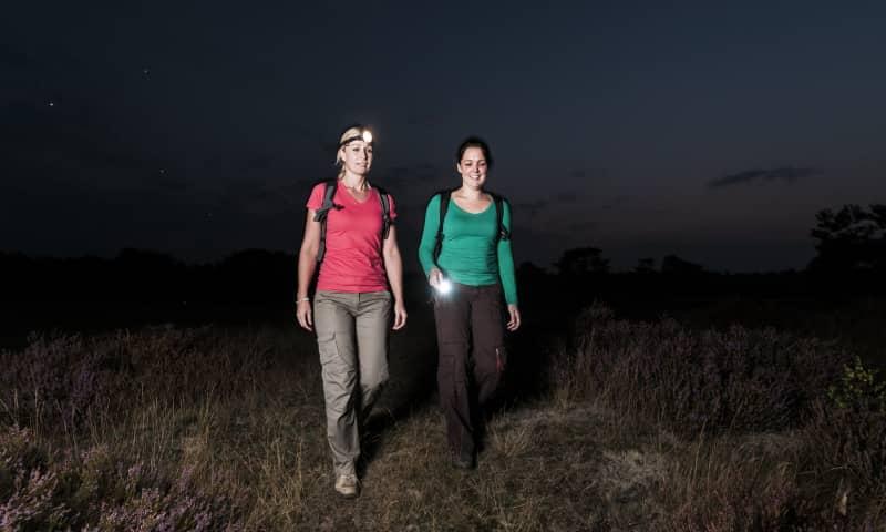 Midzomernachtloop in het Zwanenwater - Callantsoog