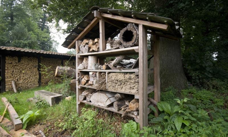 Insectenhotel bouwen op Tiengemeten