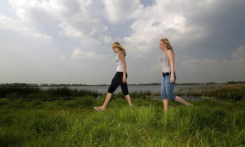 Wandelroute Groene Jonker bij de Nieuwkoopse Plassen
