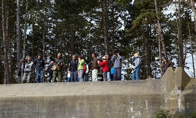 Mensen op bunker Slot Haamstede Natuurmonumenten
