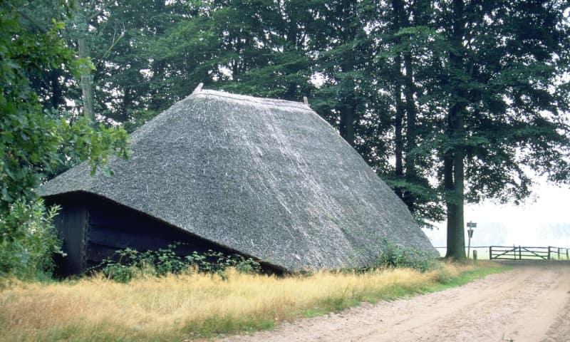 Houten schaapskooi op Rechterense Veld