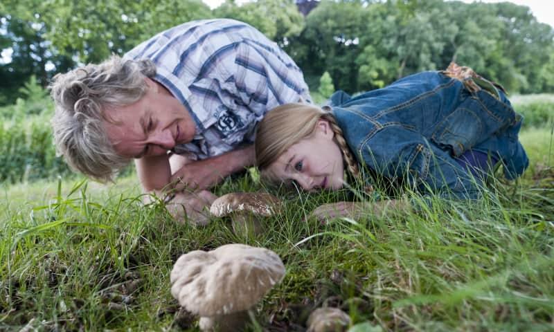 Speuren naar paddenstoelen in de Kaapse Bossen