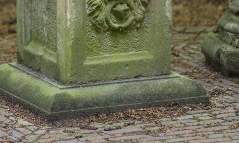 Detail van de burmaniazuil bij landgoed de Slotplaats