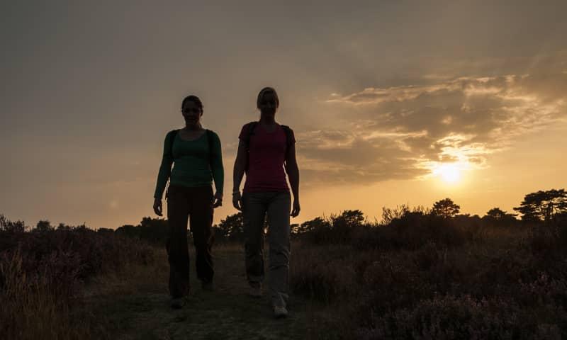 Midzomernacht in Nationaal Park Zuid-Kennemerland