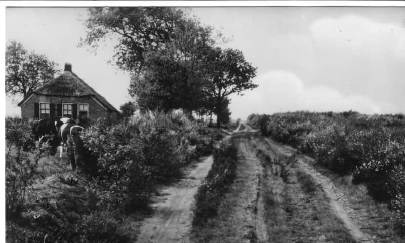 Fotopresentatie Historisch Dwingelderveld