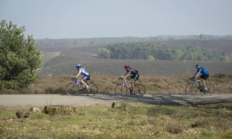 Ronde van Arnhem
