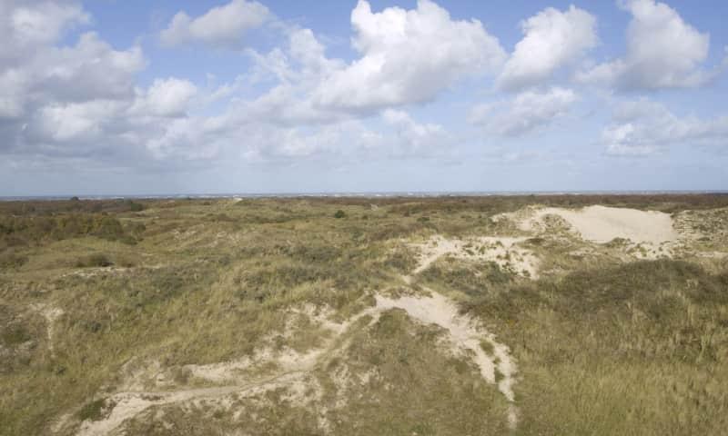 Uitzicht over Schiermonnikoog
