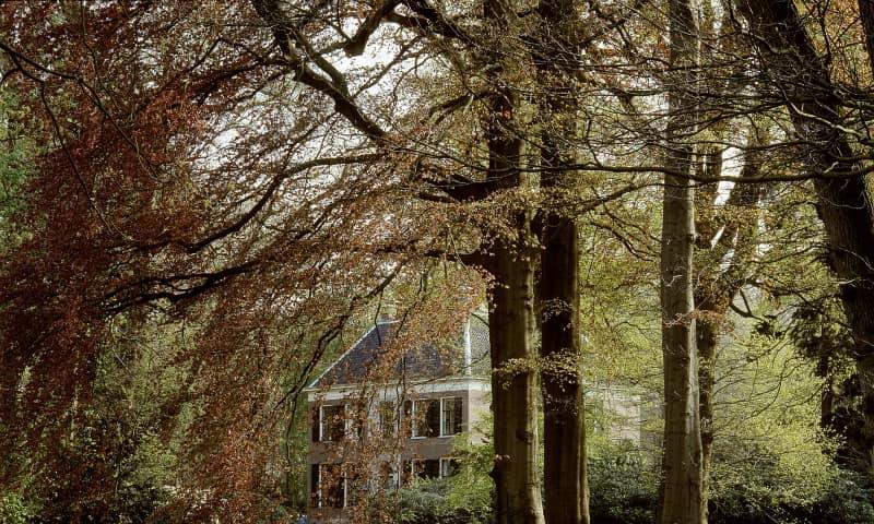 Ontdek de stinzenplanten op buitenplaats Gooilust