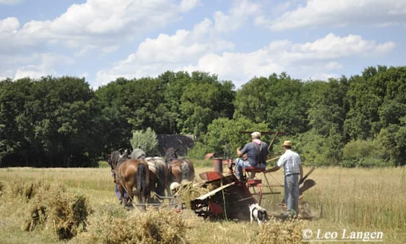 Historische Landbouwdag