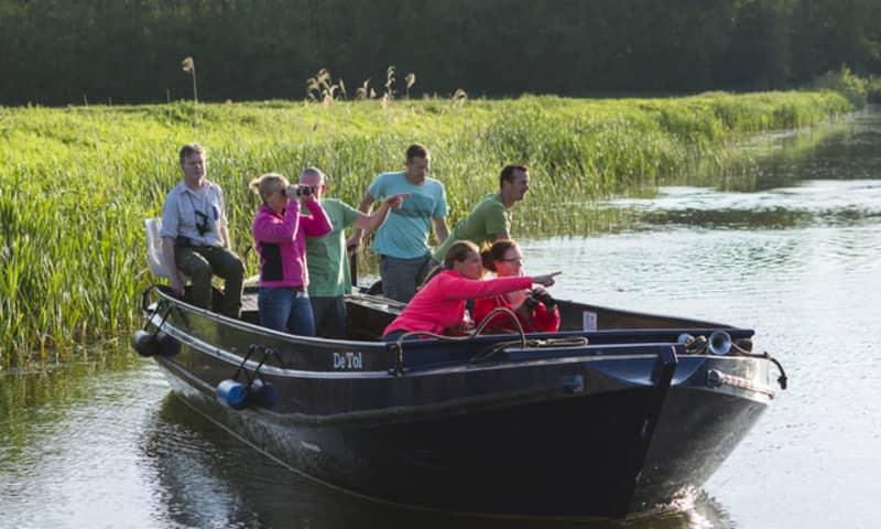 Boottocht naar aalscholvers Naardermeer