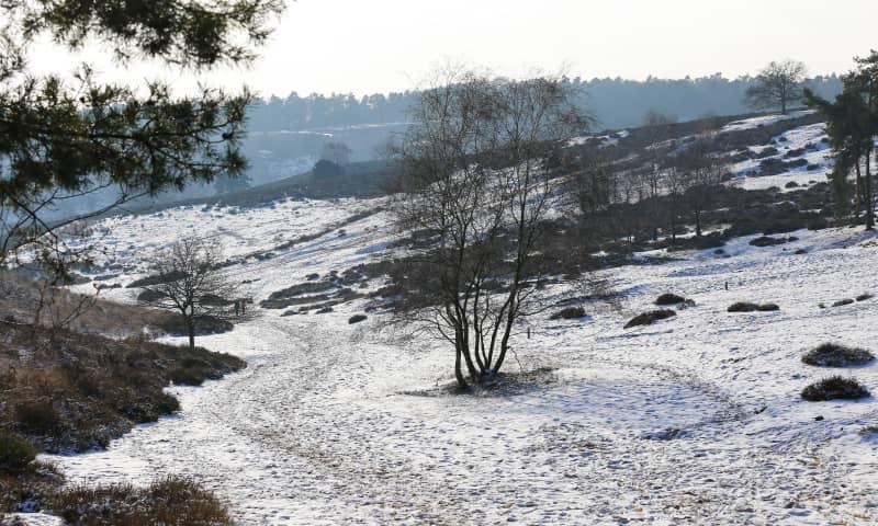 Stevige winterwandeling met snert - Veluwezoom