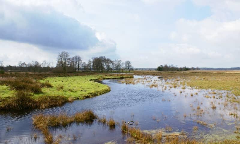 Wandelroute Wapserveld, Drents-Friese Wold