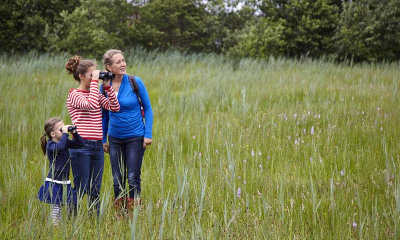 Wandelroute Empese en Tondense Heide, bij Zutphen