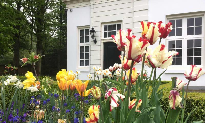 Wandelen langs voorjaarsbloemen op Beeckestijn