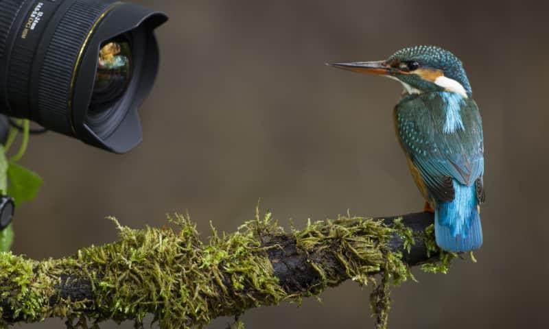 Varen en fotograferen in vogelparadijs de Pot