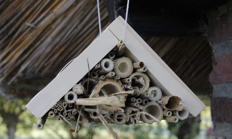 OERRR Insectenhotel maken - De Wieden