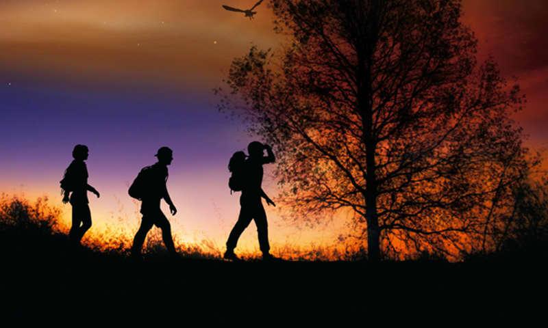 Midzomernachtloop op het Grote Veld