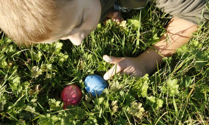 OERRR Paaseieren zoeken in 's-Graveland