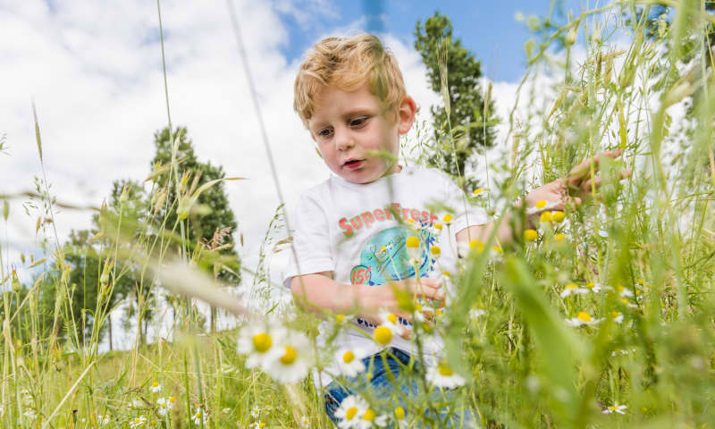 Landgoed Haarzuilens is voor kinderen een fijne plek is om te spelen, te rennen en vies te worden in het groen