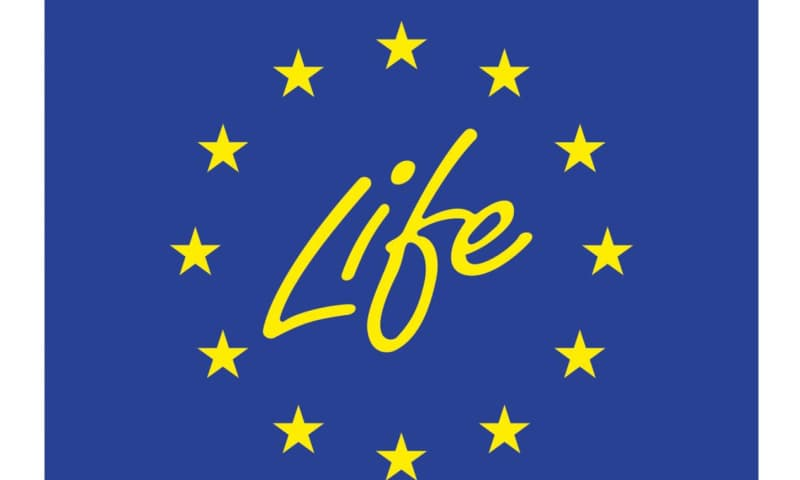 Life + logo