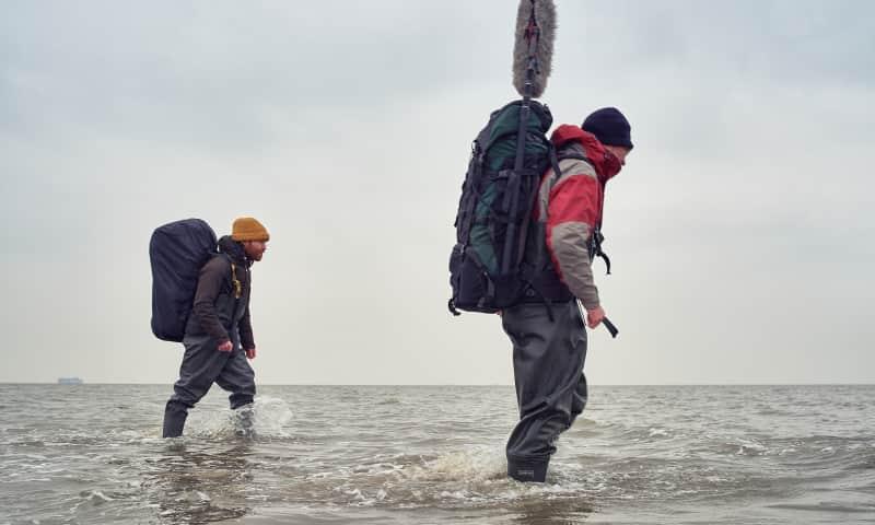 Kunstenaars lopen door de golven naar Griend