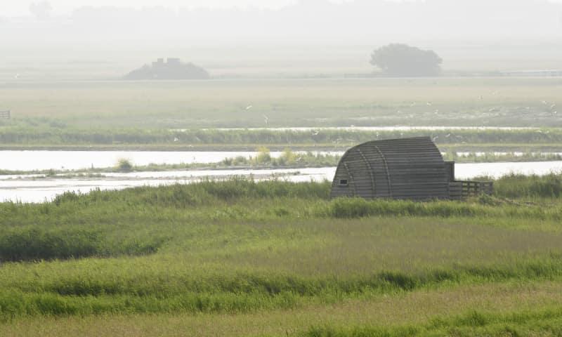 Vogelkijkhut Hegewiersterfjild - Natuurmonumenten