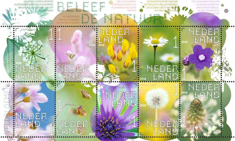 Postzegels 'Beleef de Natuur' - Veldbloemen