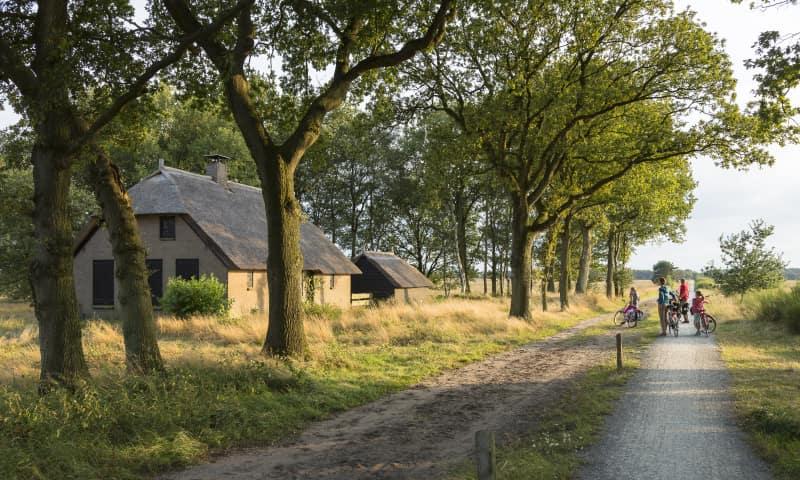 Huisje Benderse Berg Dwingelderveld met fietspad