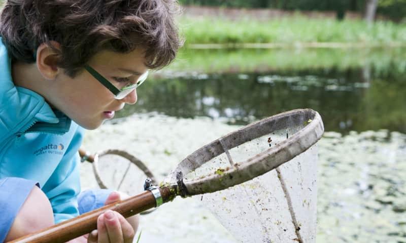 Speurtocht naar waterbeestjes - Zwanenwater