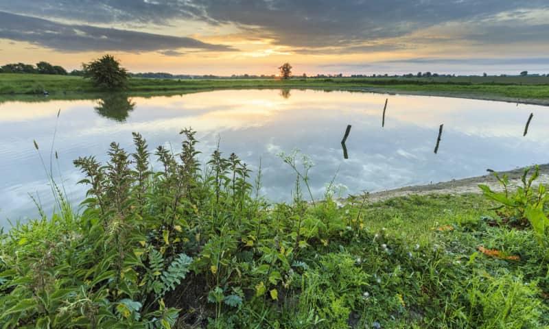 Natuurmonumenten zorgt ervoor dat fraaie riviernatuur behouden blijft