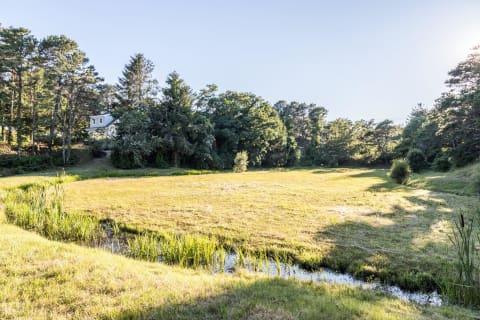 Bog and Fresh Brook on Property