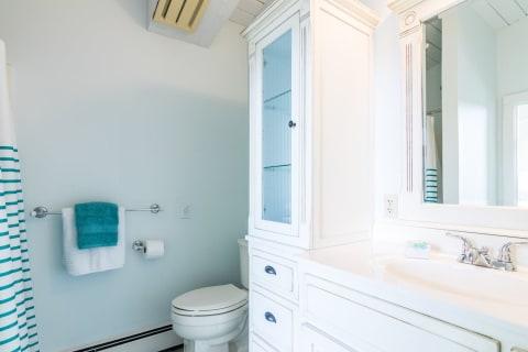 Bath off Den/4th Bedroom