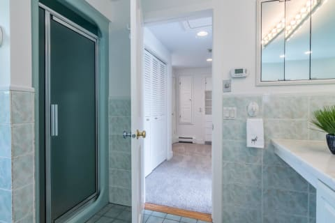 Master Shower and Toward Dressing Room