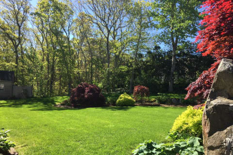 Glorious 1 Acre Yard