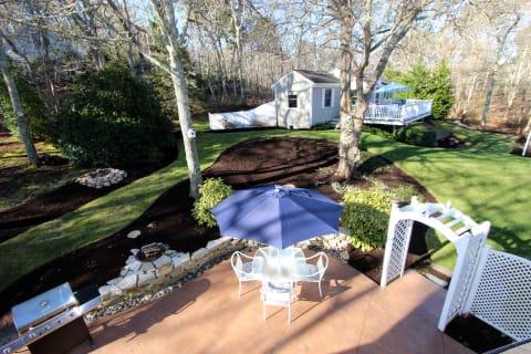 Backyard1
