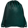 Forest Green - Drawstring, Draw, String, Back, Backpack, Backpacks, Tote, Bags, Tote, Bag, Shopper, Shopping, Budget, Totebag, Totebags;