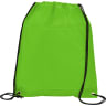 Green1 - Cooler, Coolers, Lunch, Lunch Bag, Cinch, Drawstring
