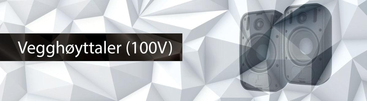 Høyttaler på vegg (100V)