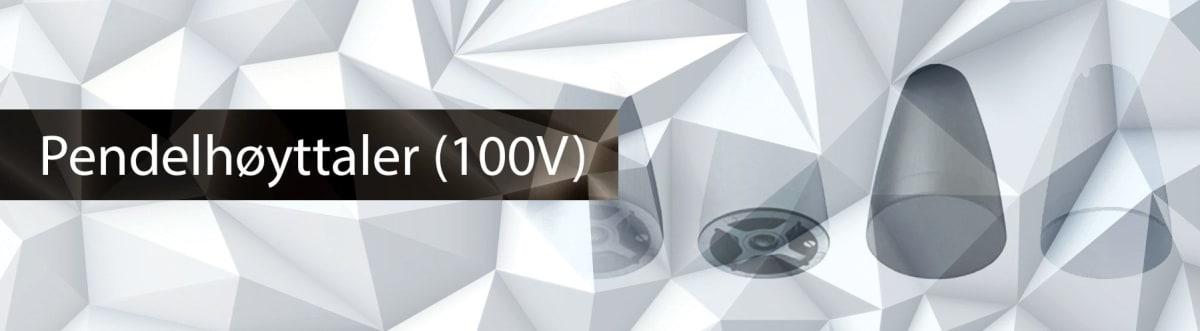 Pendelhøyttaler (100V)